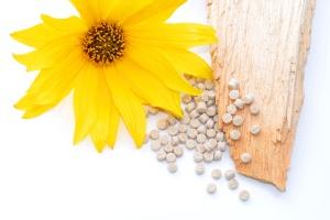 Biopolymer mit Holz und Blte